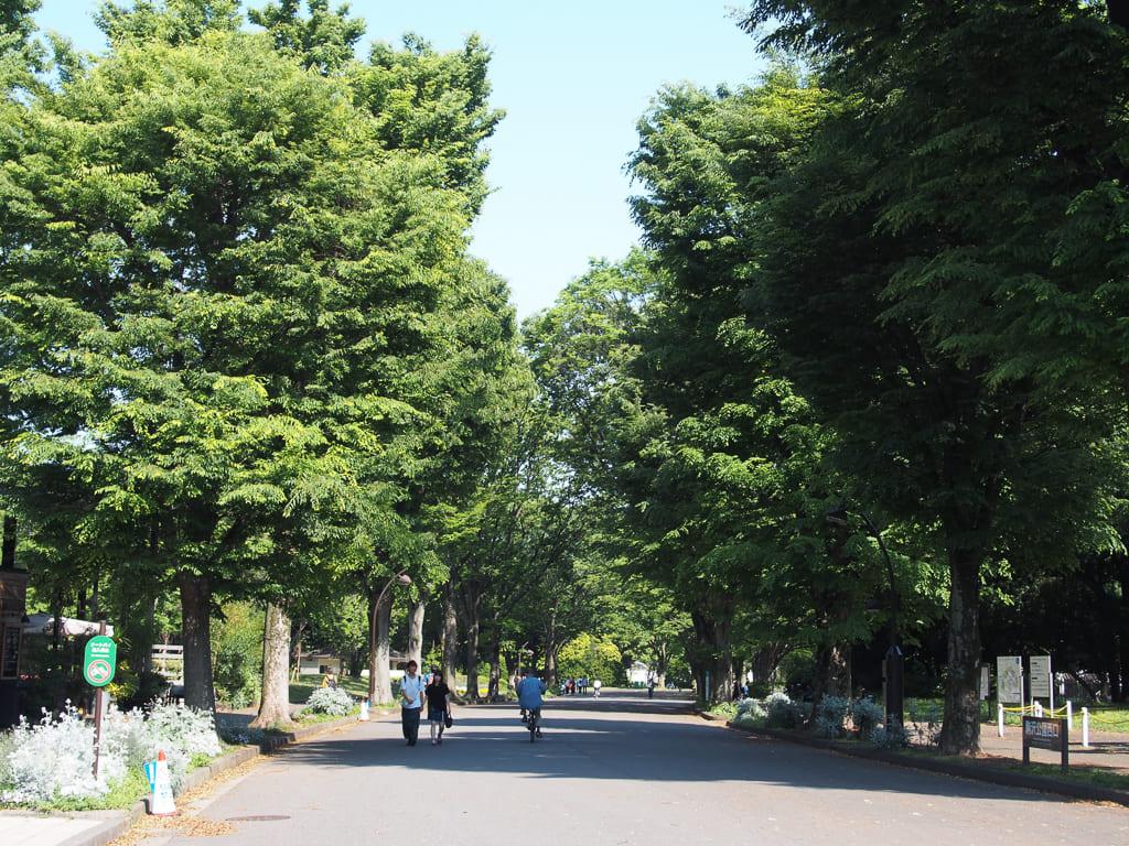 広さはなんと東京ドーム約8.8個分という広大な公園。お散歩するだけでも良い運動になりそう。