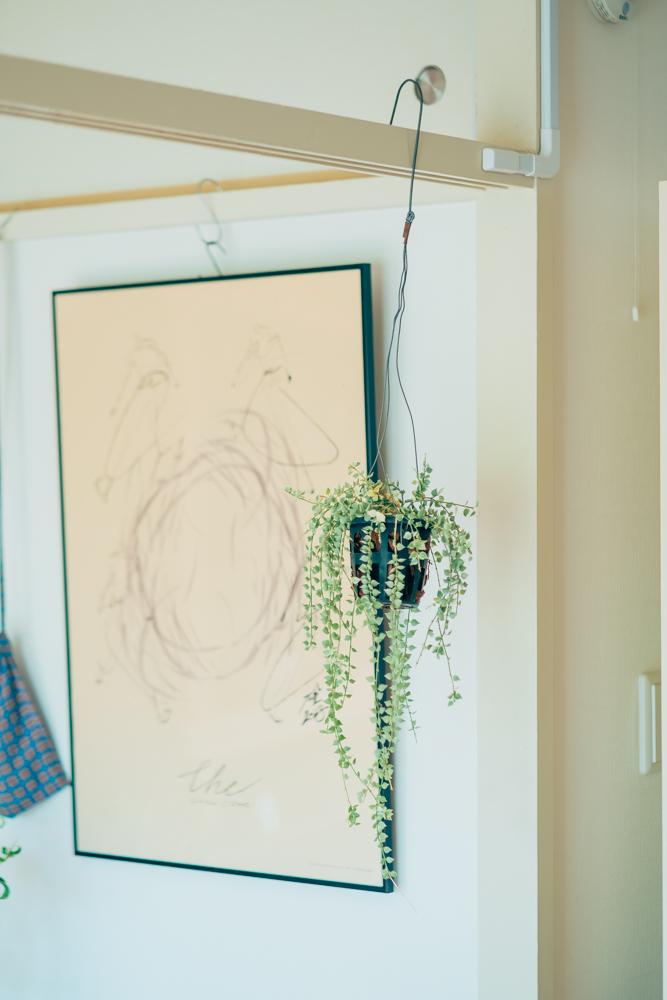 古いお部屋特有の「鴨居」も、上手に利用して植物を吊るしたり