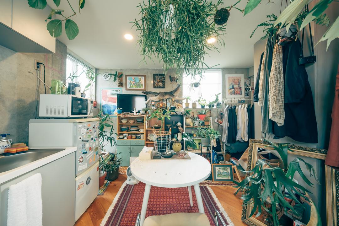 100を超える植物とアートに囲まれた、1DK +テラスの一人暮らしインテリア
